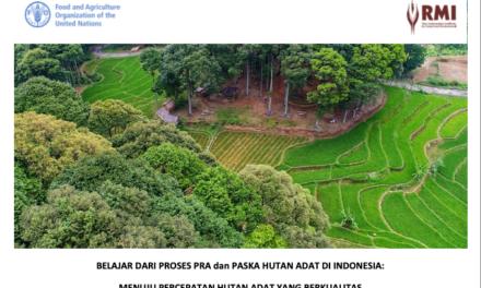 Ringkasan Eksekutif Pra dan Pasca Penetapan Hutan Adat RMI 2019